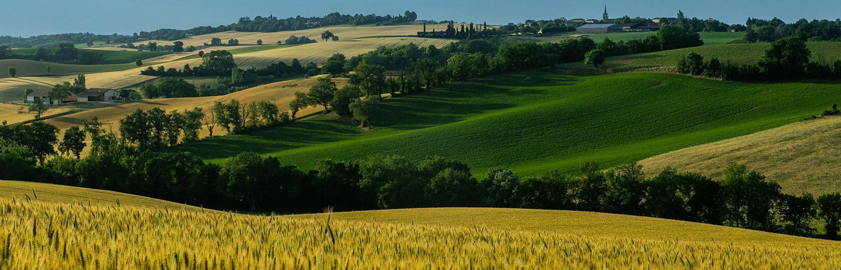 Communautés de communes et agriculteurs : construire l'agroécologie localement